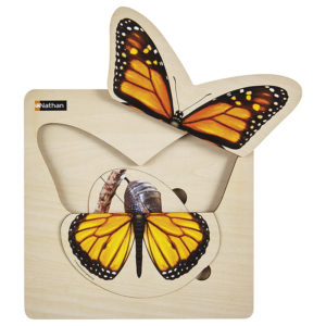 układanka warstwowa etapy rozwoju - motyl